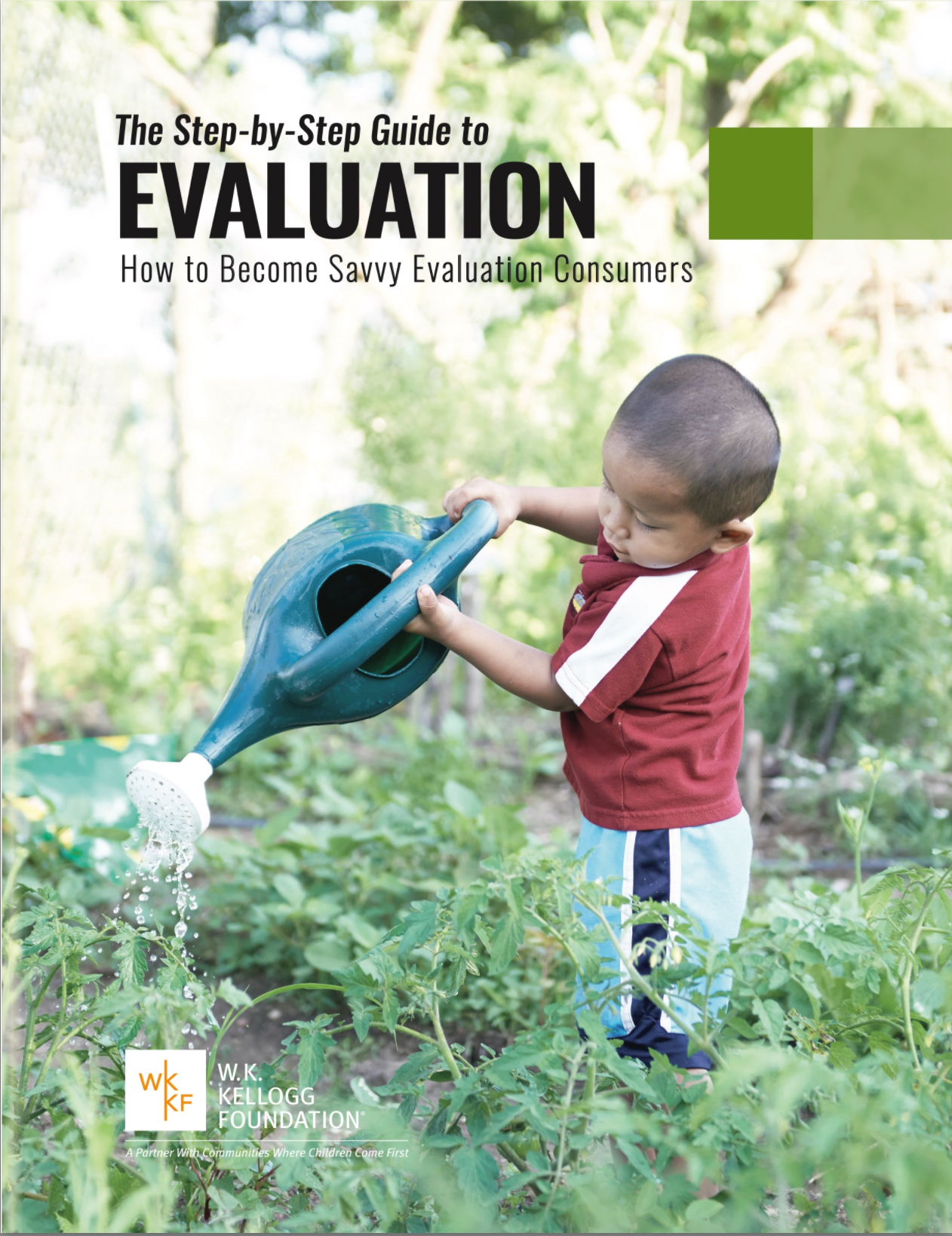 Book jacket for The Step-by-Step Guide to Evaluation