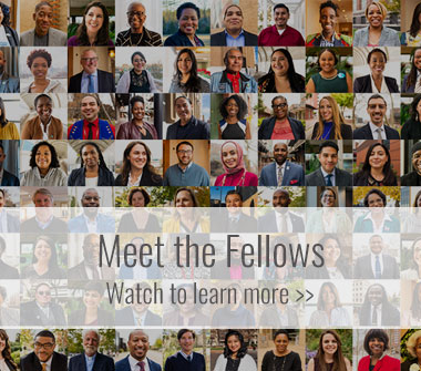 Meet the Fellows